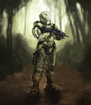 Commission: S-G217 Camouflaged