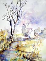 Ruisseau dans les herbes by maroe