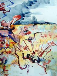Poppys by maroe