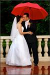 Wedding 4011