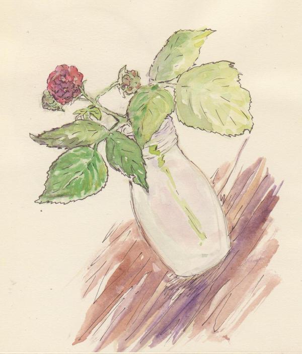 raspberry by LRaien