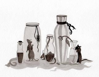 Bottle rats