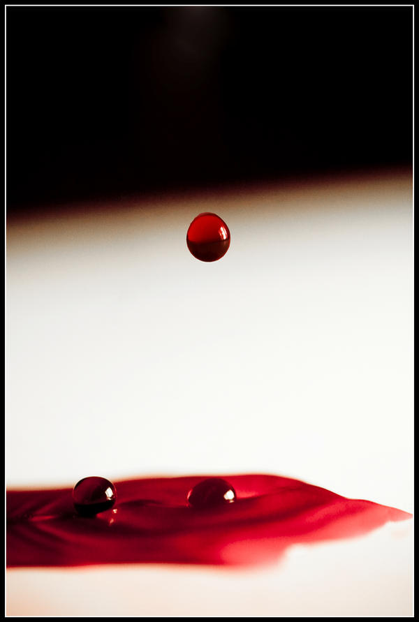 the taste of blood by joganelken
