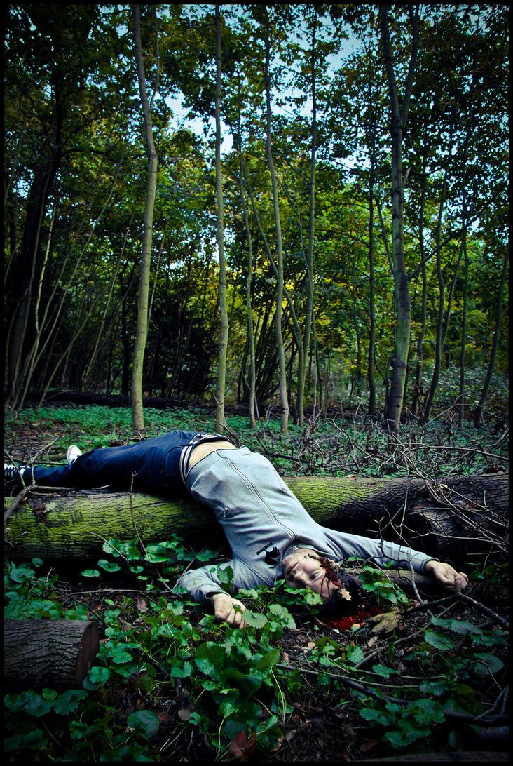 Petit rendez-vous dans les bois. by joganelken
