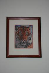 Tiger by stardancer1