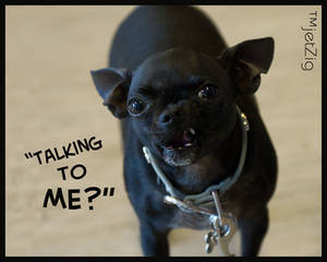 talking to me?