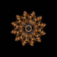 Mandala Autumn Feathers
