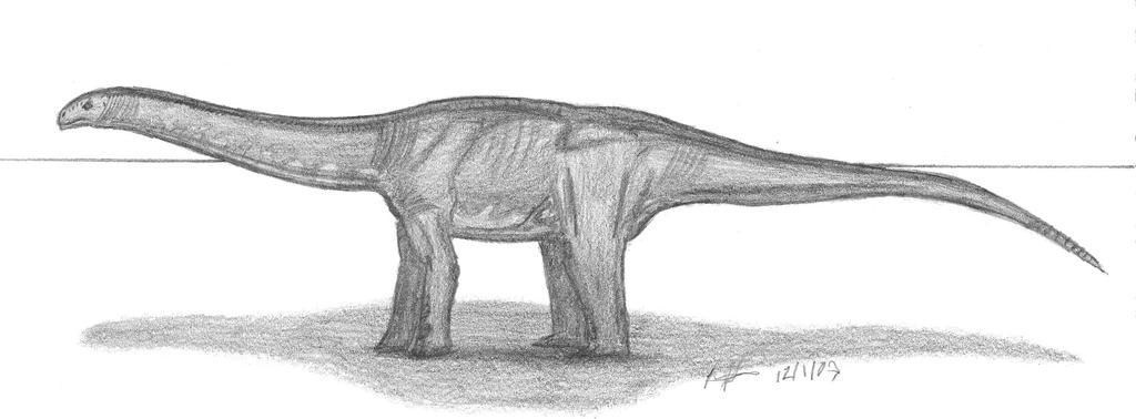 Cetiosaurus oxoniensis by EmperorDinobot
