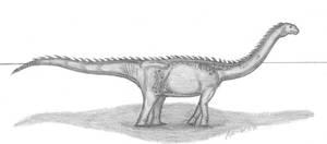 Epachthosaurus sciuttoi