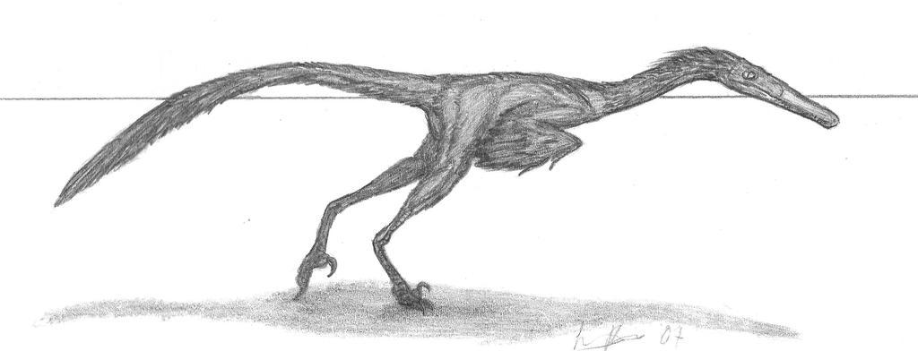 Buitreraptor gonzalezorum by EmperorDinobot