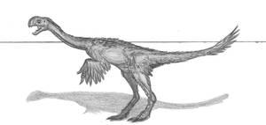 Conchoraptor gracillis II by EmperorDinobot