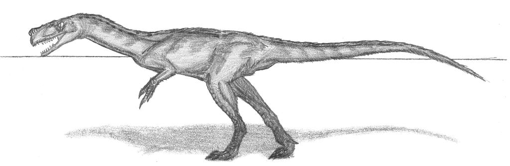 Proceratosaurus bradleyi by EmperorDinobot