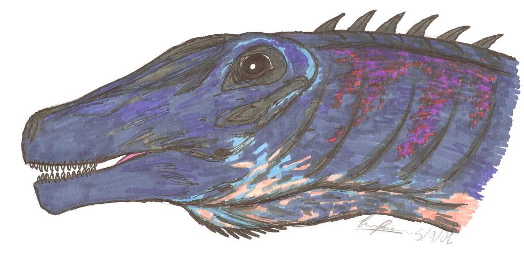 Quaesitosaurus orientalis by EmperorDinobot