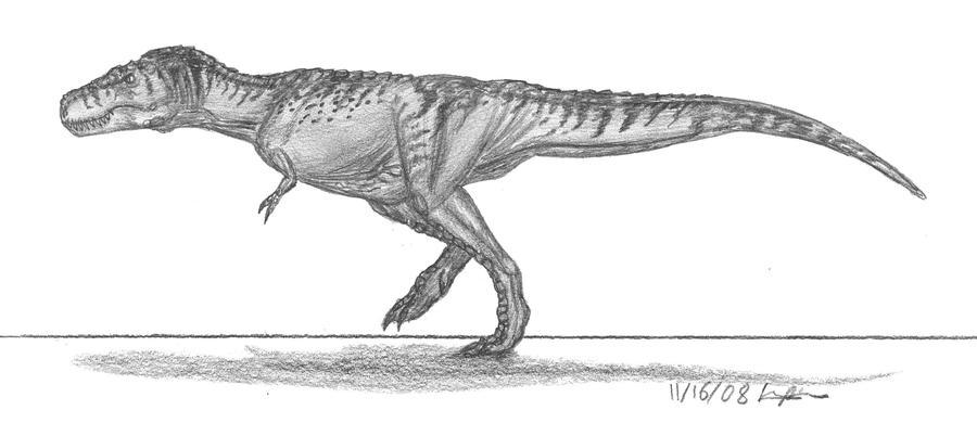 Tyrannosaurus rex by EmperorDinobot