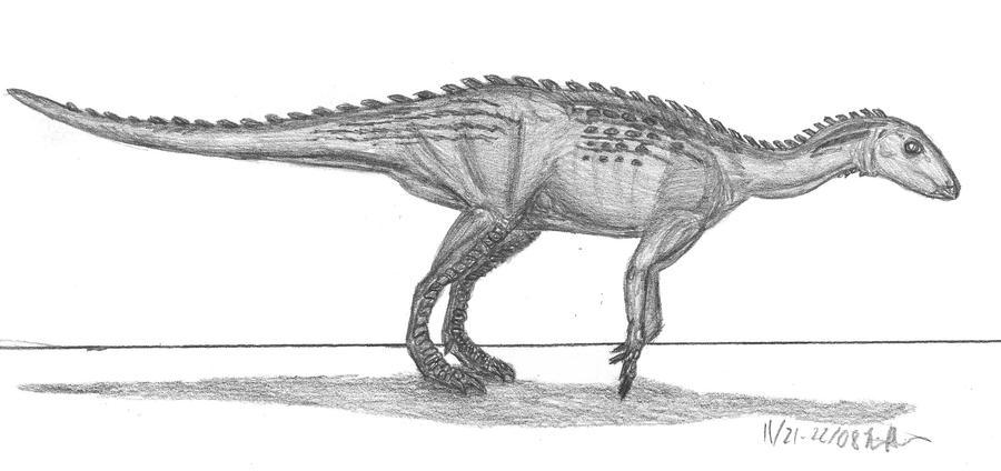 Macrogryphosaurus gondwanicus by EmperorDinobot