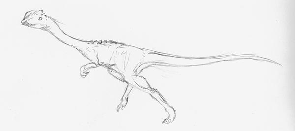 Dilophosaurus sinensis sketch by EmperorDinobot