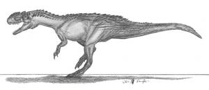Yangchuanosaurus shangyouensis by EmperorDinobot