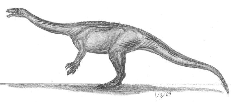 Lufengosaurus hunei by EmperorDinobot