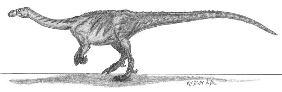 Massospondylus carinatus by EmperorDinobot