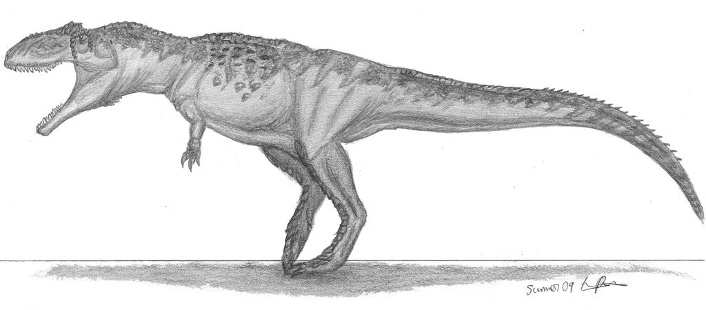 Giganotosaurus carolinii vs mapusuarus rosae the world for Carcharodontosaurus coloring page