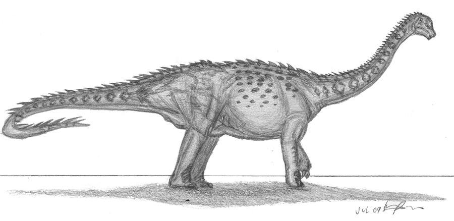Diamantinasaurus matildae by EmperorDinobot