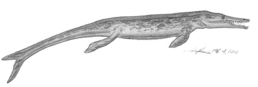 Geosaurus sp. by EmperorDinobot