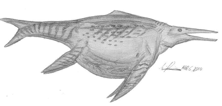 Shonisaurus popularis by EmperorDinobot