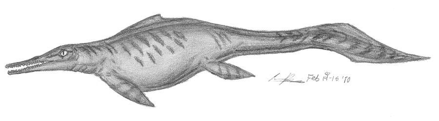 Mixosaurus cornalianus by EmperorDinobot
