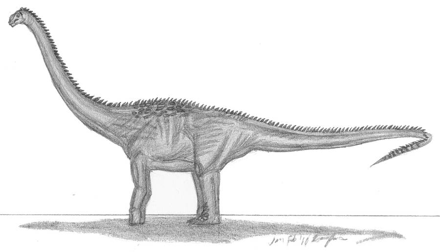 Puertasaurus reuili by EmperorDinobot