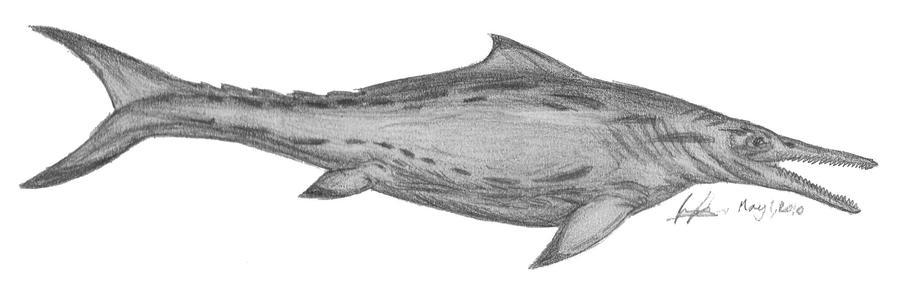 Top 10 größte(=schwerste)Meeresraubitere. Temnodontosaurus_platyodon_by_EmperorDinobot