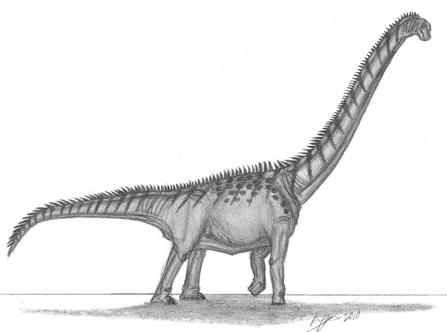 Futalognkosaurus dukei by EmperorDinobot