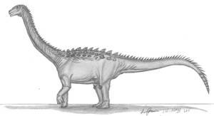 Tapuiasaurus macedoi