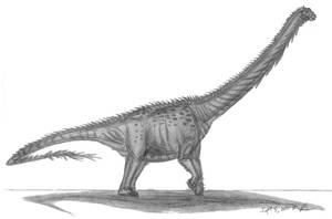 Argyrosaurus superbus by EmperorDinobot