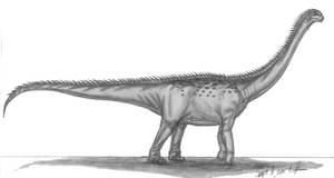Andesaurus delgadoi