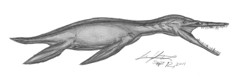 Dolichorhynchops osborni by EmperorDinobot