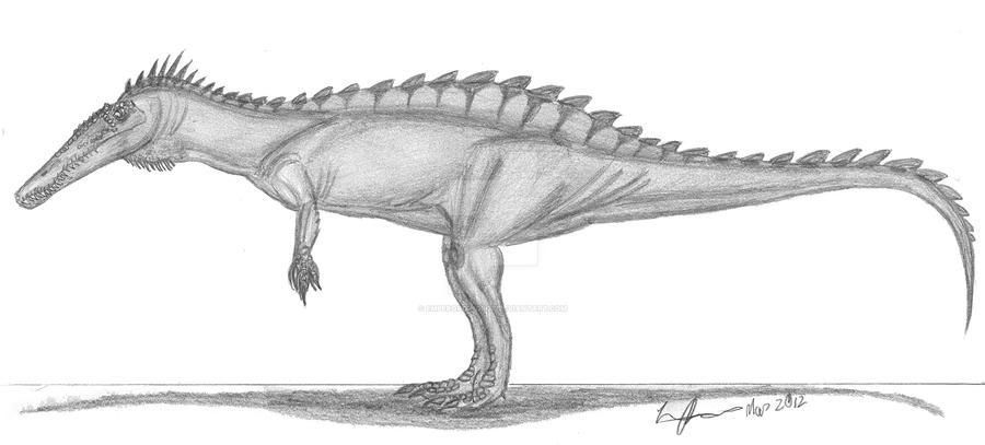 Suchomimus tenerensis by EmperorDinobot