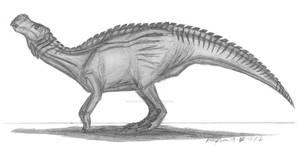 Altirhinus kurzanovi