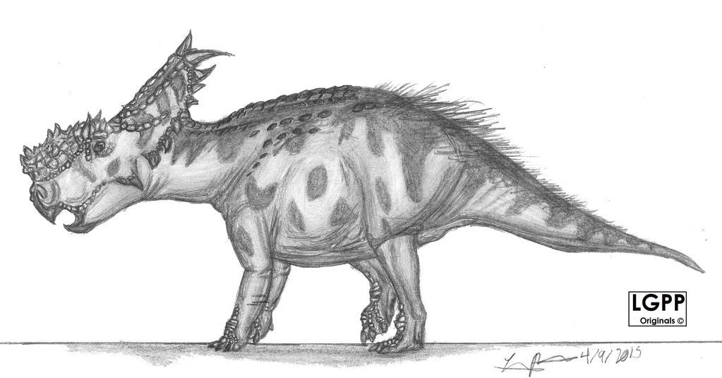 Pachyrhinosaurus canadiensis by EmperorDinobot
