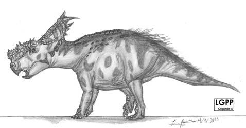Pachyrhinosaurus canadiensis