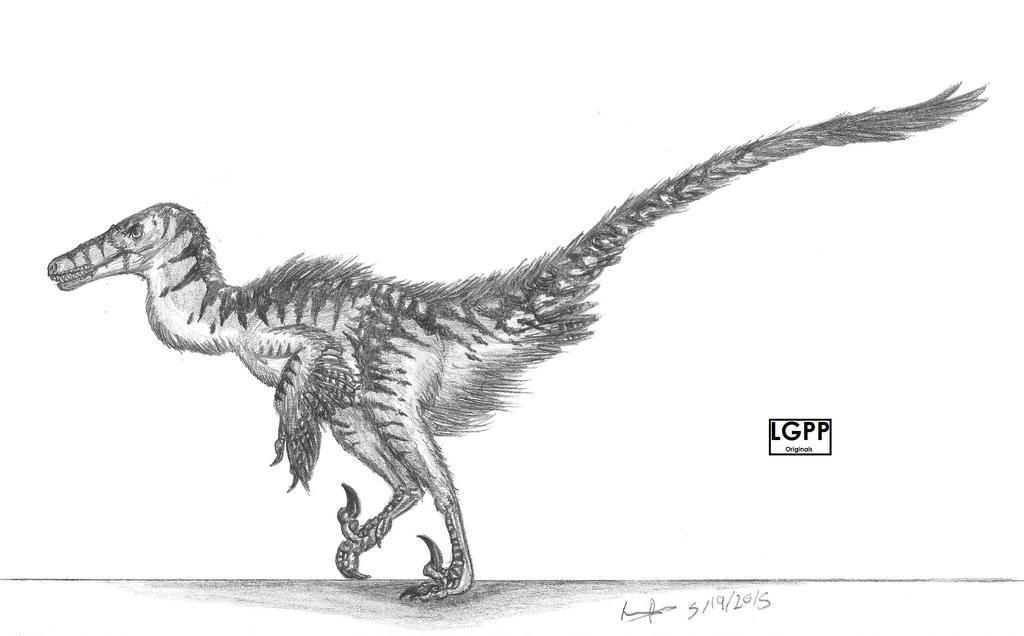 Velociraptor mongoliensis by EmperorDinobot
