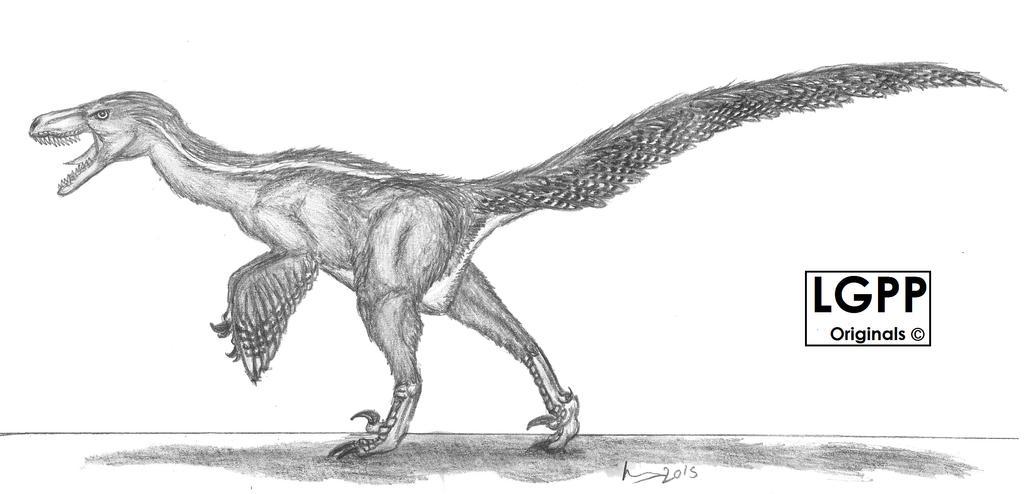 Dromaeosaurus albertensis by EmperorDinobot