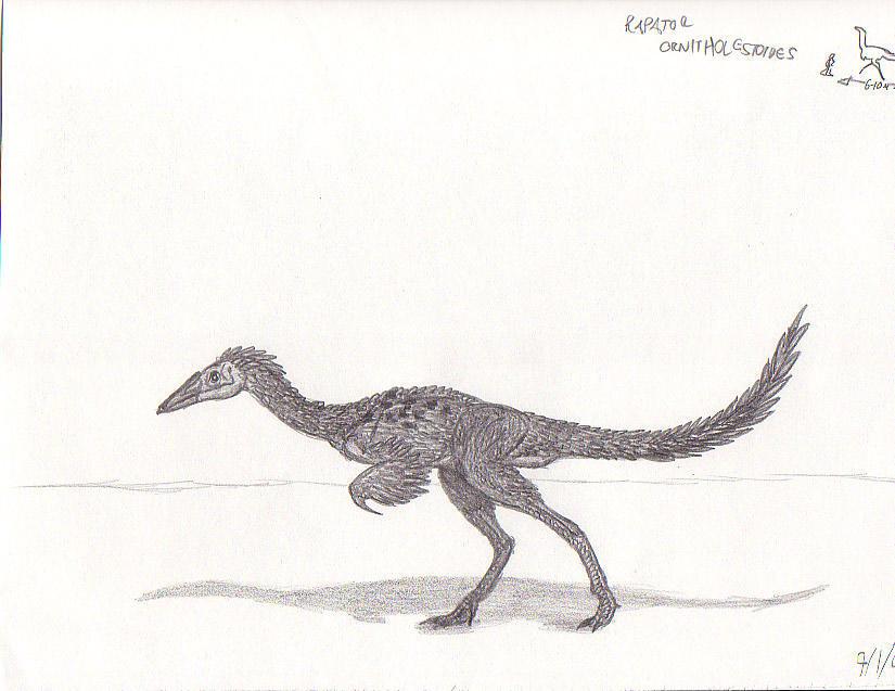Rapator ornitholestoides by EmperorDinobot