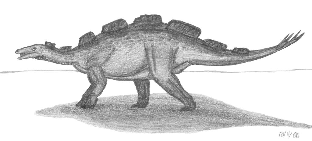 Wuerhosaurus homheni by EmperorDinobot