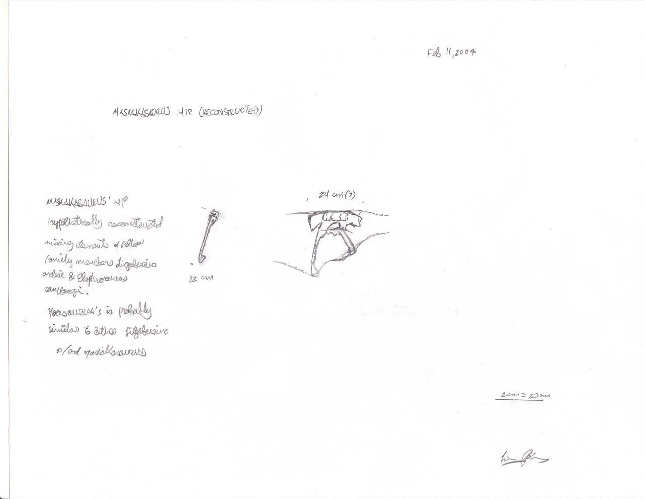 Noasaurus project pt1. Hips2
