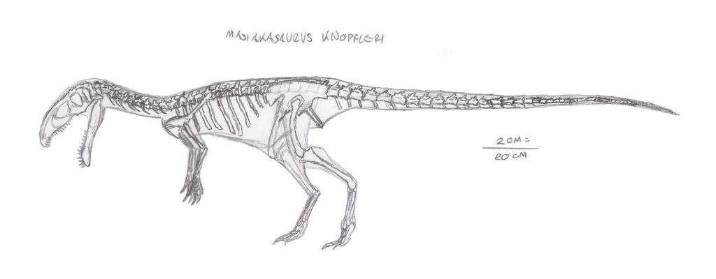 Masiakasaurus knopfleri skel. by EmperorDinobot