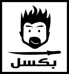 pxll logo card by anasemad