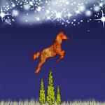 Horse Jumping6