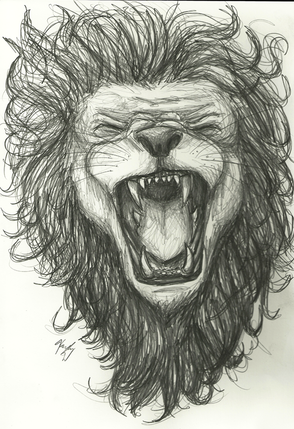 Commission- Lion Sketch by Clockwork-Conscience on DeviantArt