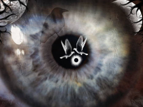eye trust the emptyness