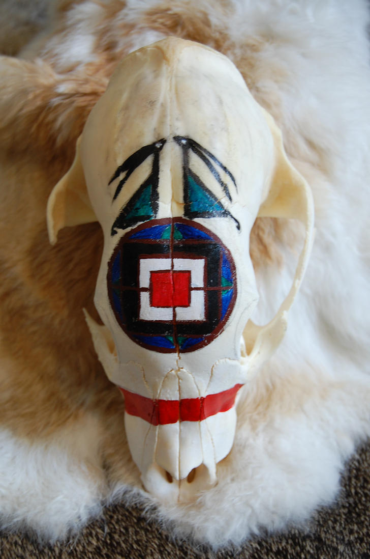 Geometric Painted bear cub skull by MagicallyCapricious